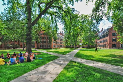 photo of campus quad with students sitting on the grass